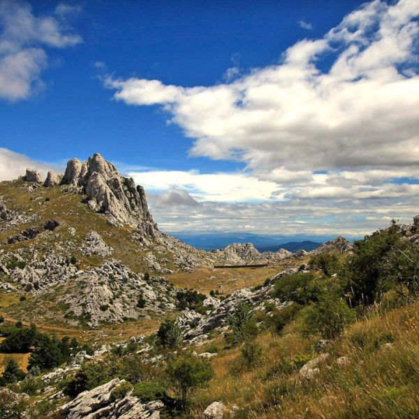 Jeep photo safari na planini Velebit